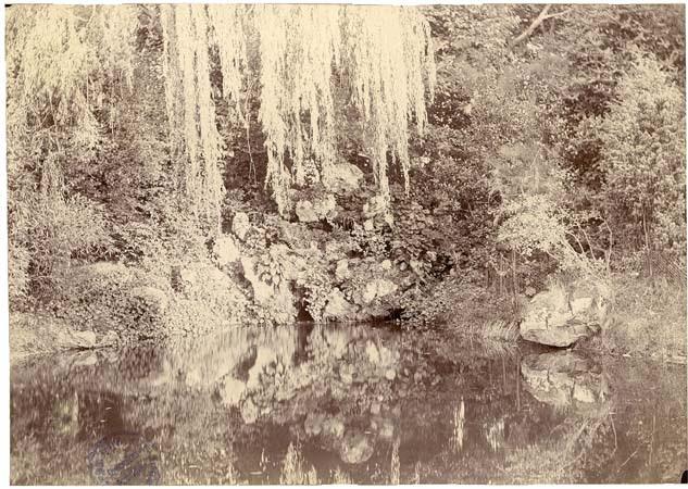 Parc du château de Beauregard (pièce d'eau, 1er sept. 1895)