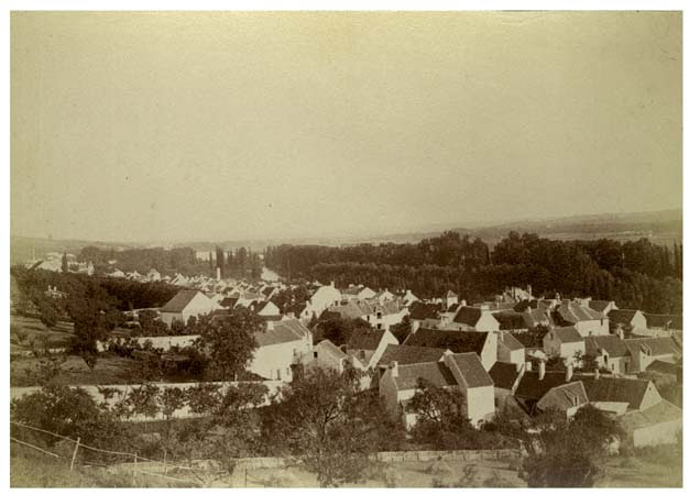 Vaux (est) de la côte du château, 25 avril 1888